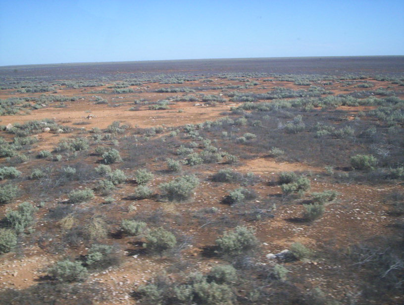 Nullaboor Plain